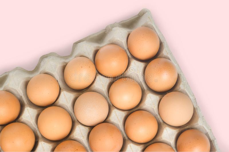 Close-up fresh and raw brown chicken eggs in egg box isolated on pastel background with copy space. Organic eggs.Natural healthy f royalty free stock image