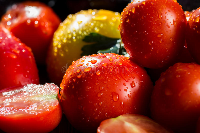 Close-up of fresh, ripe tomatoes on wood background.Group of tom. Atoes. Red and yellow tomatoes, tomatoes in drops of water stock photos