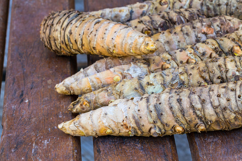 Close up fresh turmeric root (Yellow Root Zedoary, Curcuma longa Linn stock image