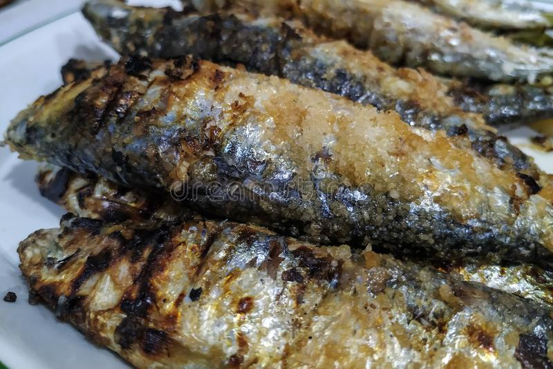 Close up of freshly grilled Portuguese sardines royalty free stock photo