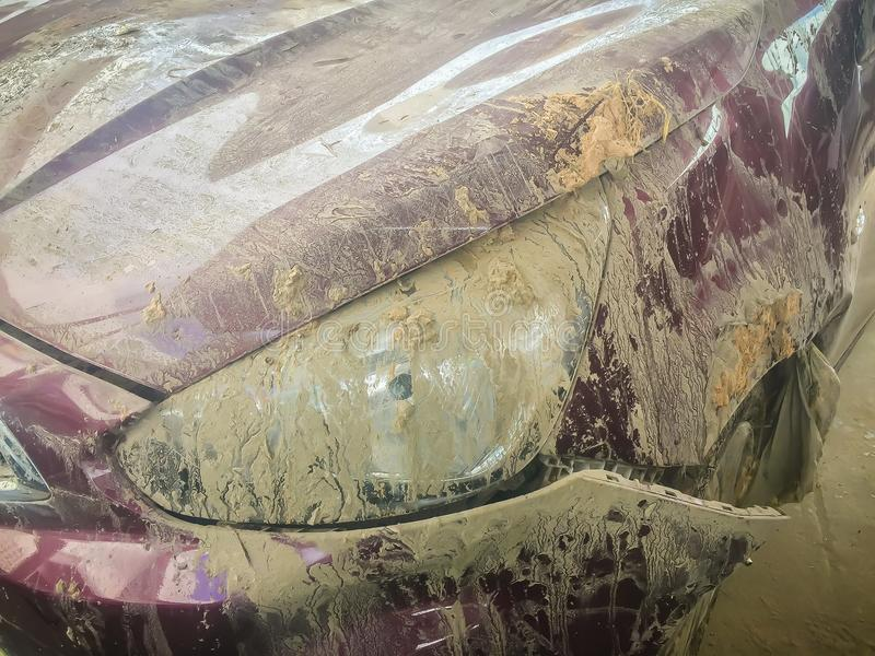 Close-up front of dirty car distorted by accident. Crashed dirty. Car severely damaged and needs help for move to the garage to repair and call to loss adjuster stock photos