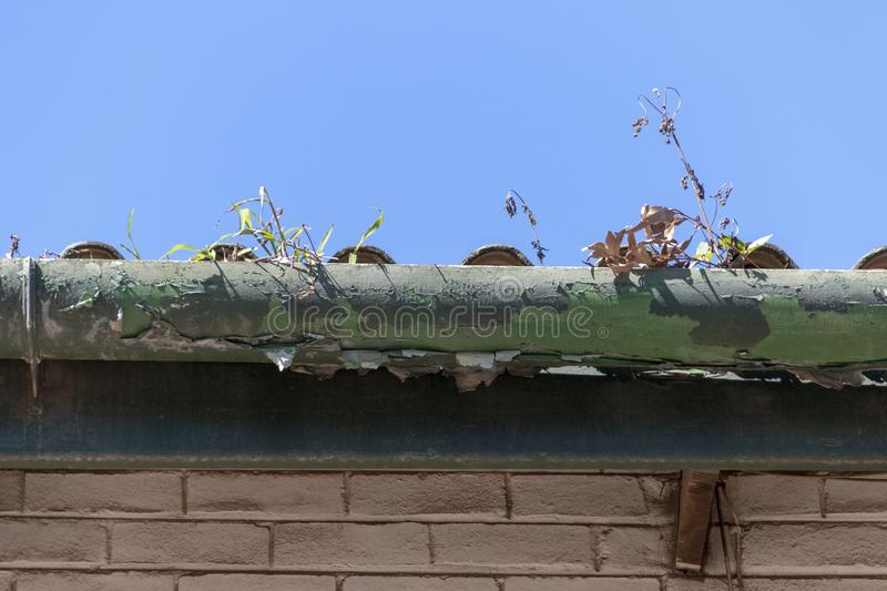 A old gutter. A close up front view of a old light and dark green gutter where the paint has peeled away from the outdoor elemts and that has weeds growing out royalty free stock image