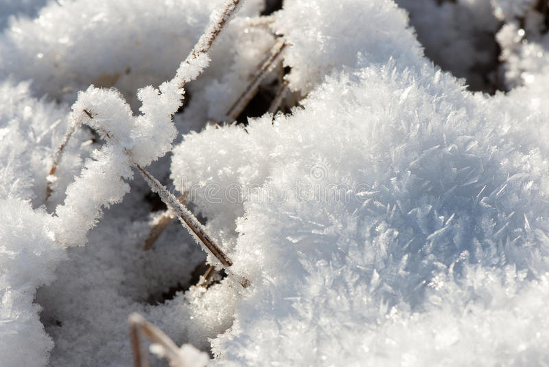 Close-up frozen snowflakes. Abstract in winter royalty free stock image