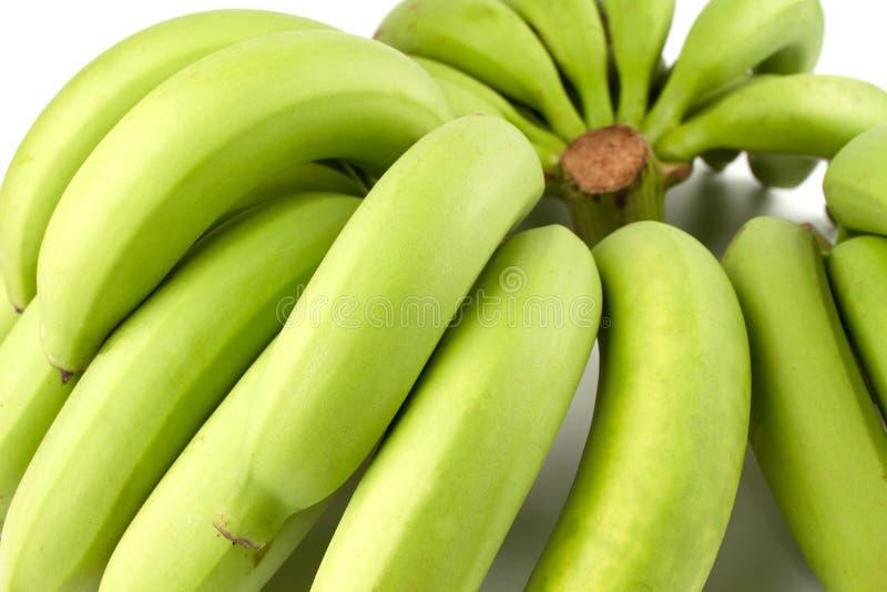 Yellow Green Banana Comp. Close up Full Three Green Banana Comp on white background stock photography