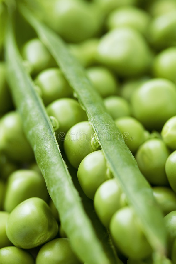 Close up of garden peas royalty free stock photography