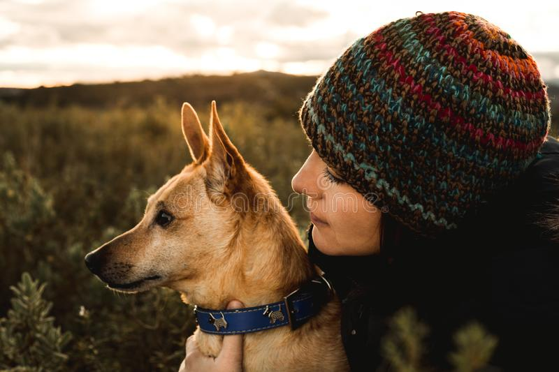Close-up of a girl with her dog in the field. Concept of friendship between dog and girl royalty free stock images
