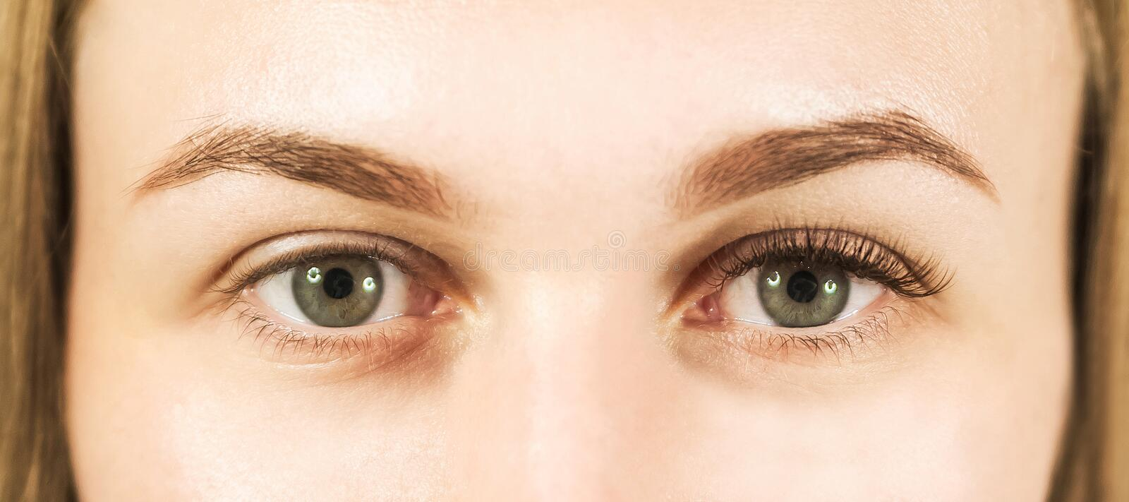 Close-up of a girl`s eye with lashes. The concept of caring for the eyes, eyelash extensions in the salon. Close-up of a girl`s eye with lashes. The concept of stock photography