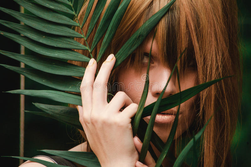 Close-up of girl`s eyes and hands in ferns. Close-up of girl`s eyes and hands with fingers in gold in fern branches royalty free stock photography