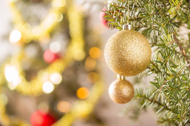Close-up of gold Christmas ball hanging on Christmas tree royalty free stock photography