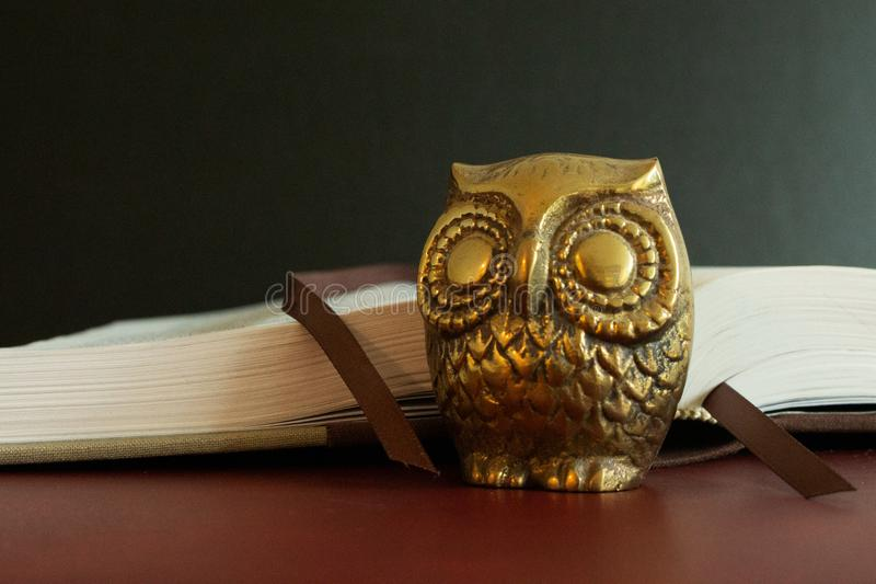 Close up of a golden figure of an owl in front of an open book. royalty free stock images