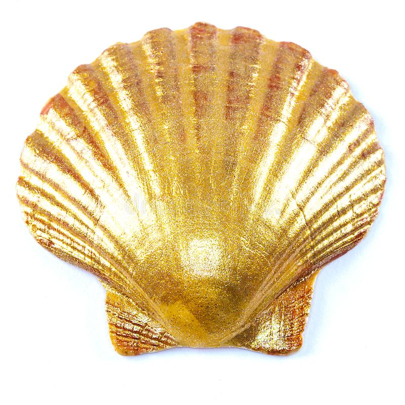 Gold scallop shell. Close up of golden painted scallop shell isolated on white stock images