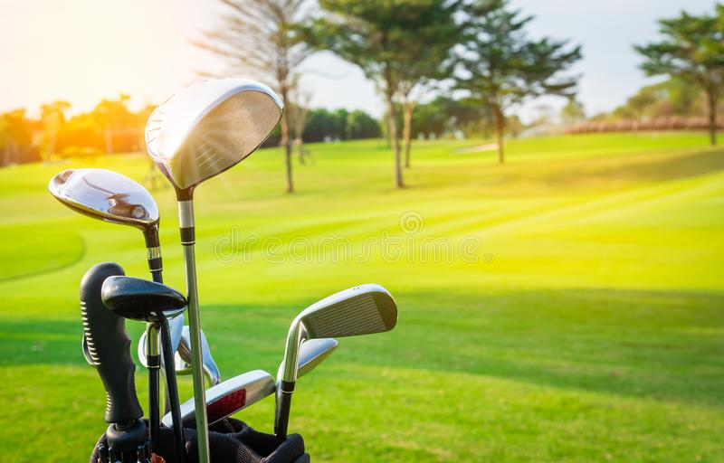 Close up golf clubs drivers in golf luggage over green field and sunlight royalty free stock photo
