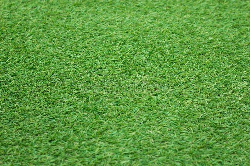 Close up of Green Grass Background stock photos