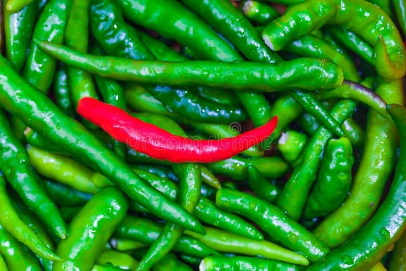 Close up of Green Hot Pepper. Macro stock photos