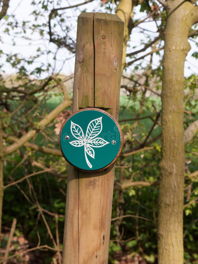close up green and white leaf wooden sign on post details royalty free stock images