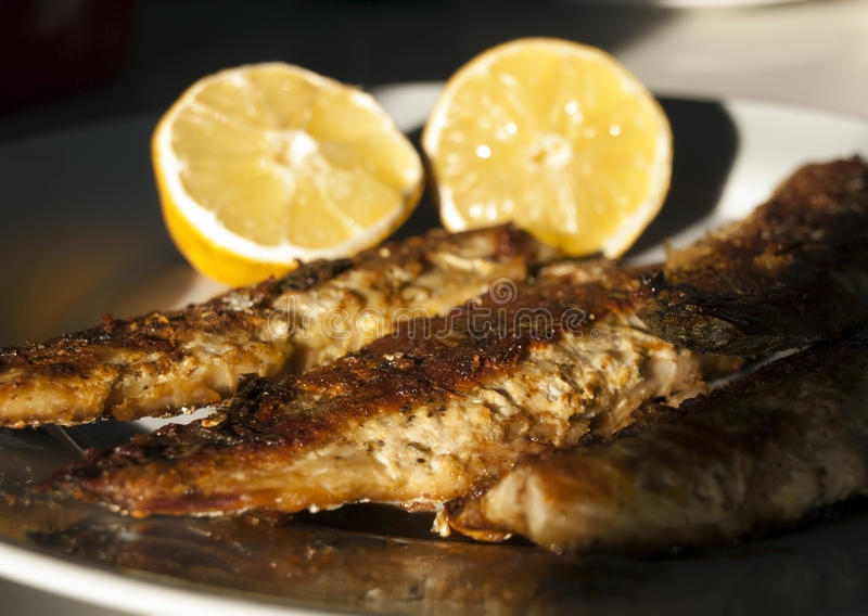 Close-up of grilled mackerel on plate royalty free stock image