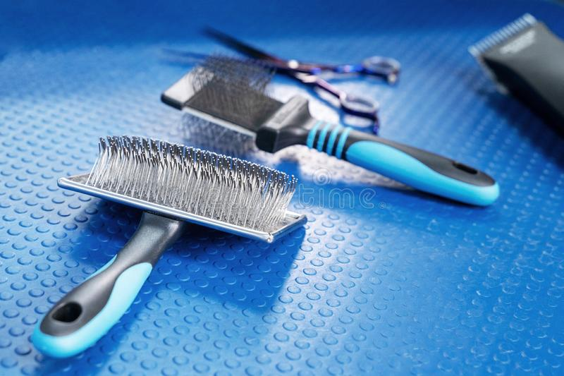 Close up grooming brush and special professional comb for dog and cat grooming. Bright blue rubber mat background. Concept of pets. Hair care and treatment stock image