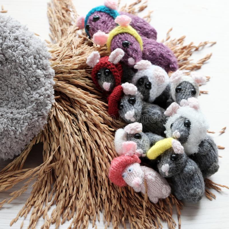 Close up group of grey mice lay down on sheaf paddy. Colorful close up group of grey mice lay down on sheaf of yellow paddy on white background, tiny rats knit royalty free stock photos