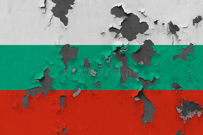 Close up grungy, damaged and weathered Bulgaria flag on wall peeling off paint to see inside surface royalty free stock image