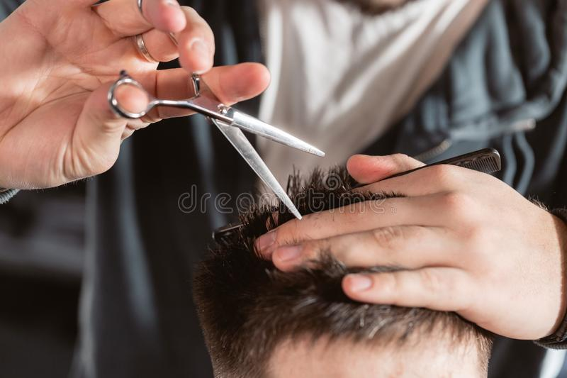Close-up Hair cutting with metal scissors. Master cuts hair and beard of men in the barbershop, hairdresser makes. Hairstyle for a young man stock photography
