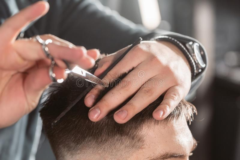 Close-up Hair cutting with metal scissors. Master cuts hair and beard of men in the barbershop, hairdresser makes. Hairstyle for a young man stock image