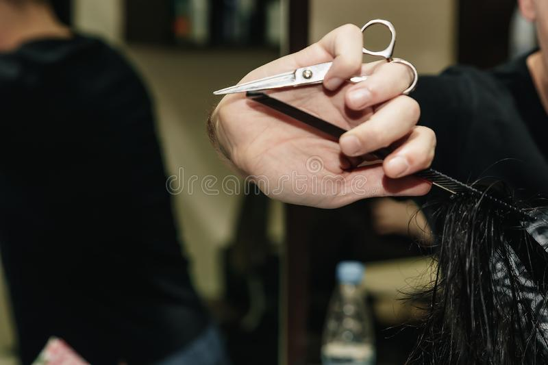 Close-up of a hairdresser cutting the hair of a woman in a beauty salon royalty free stock image