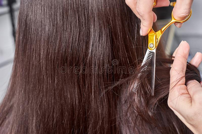 Close-up of a hairdresser cutting the hair of a woman. stock photo