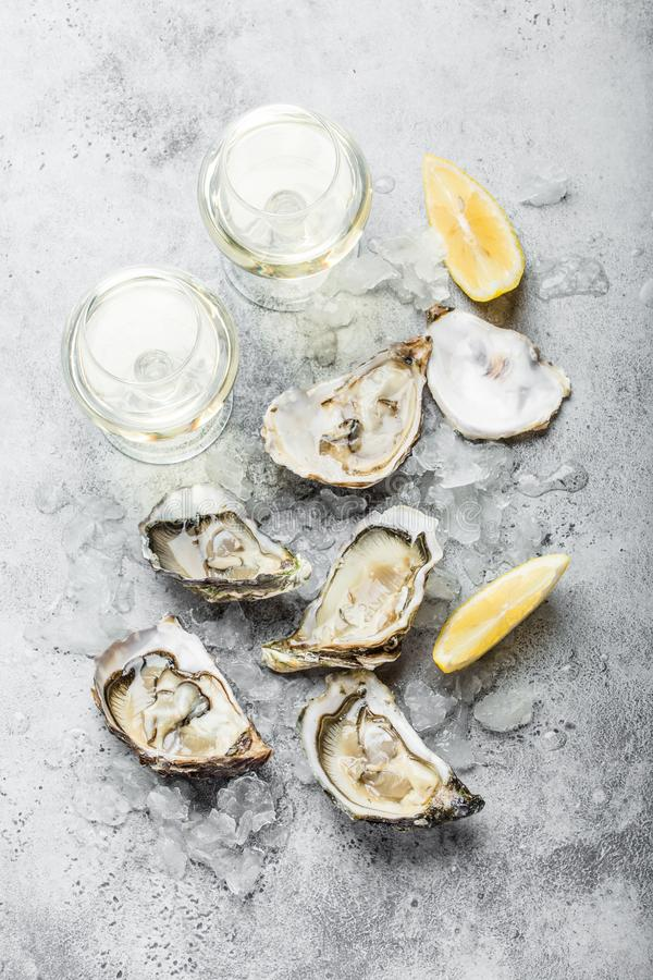 Fresh opened oysters royalty free stock images