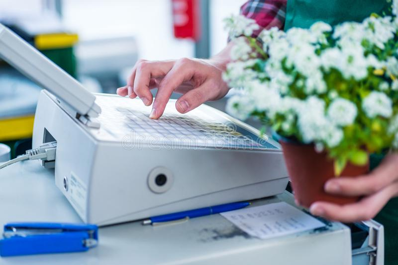Close-up of the hands of a cashier entering into the cash regist royalty free stock image
