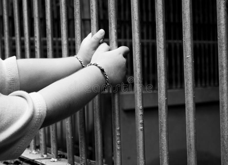 Close up hands of child catch the animal cage in the zoo. Dangerous  in children stock images
