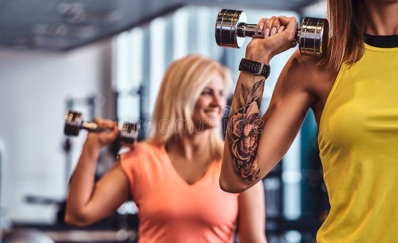 Close-up on a hands with dumbbells. Two fitness girls in sportswear doing exercises with dumbbells in the modern gym. royalty free stock photos
