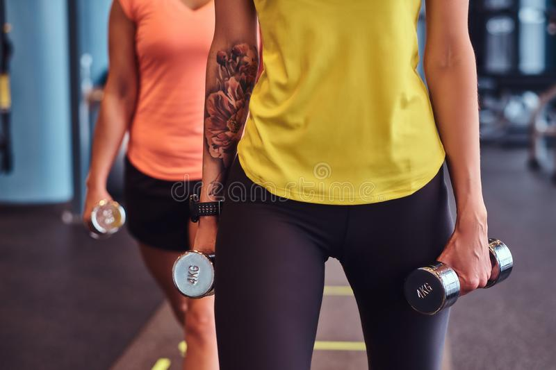 Two fitness girls in sportswear doing lunges with dumbbells in the modern gym. royalty free stock image