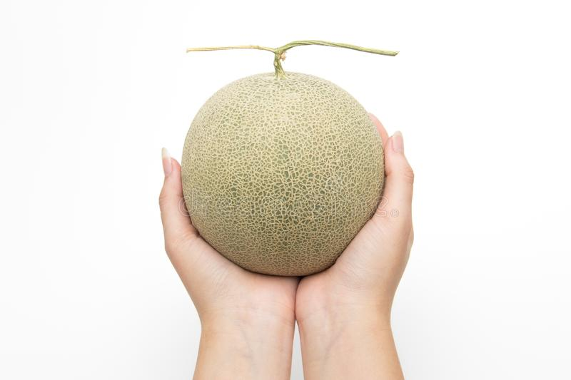 Close up hands hold melon on white isolated background royalty free stock photography