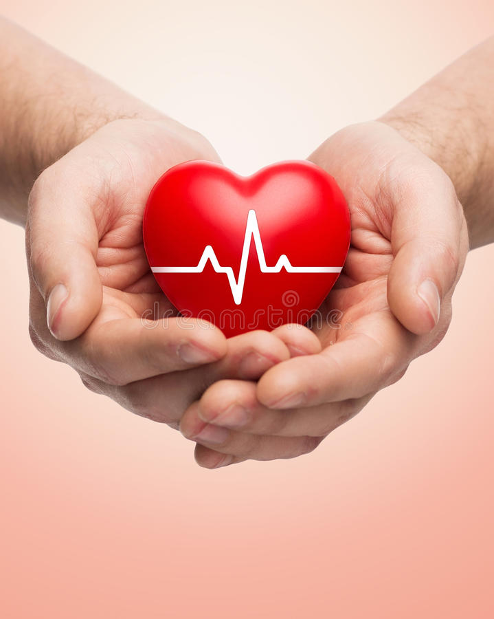 Close up of hands holding heart with cardiogram royalty free stock photography