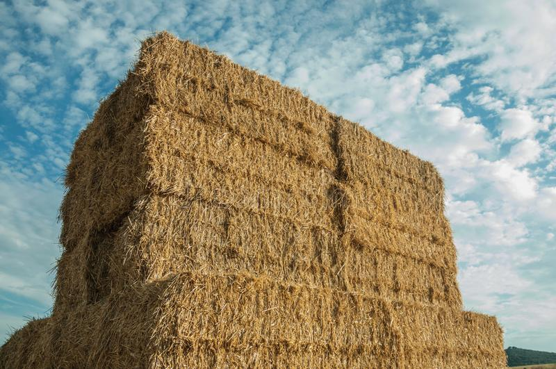 Close-up of hay bales piled up in a farm stock images