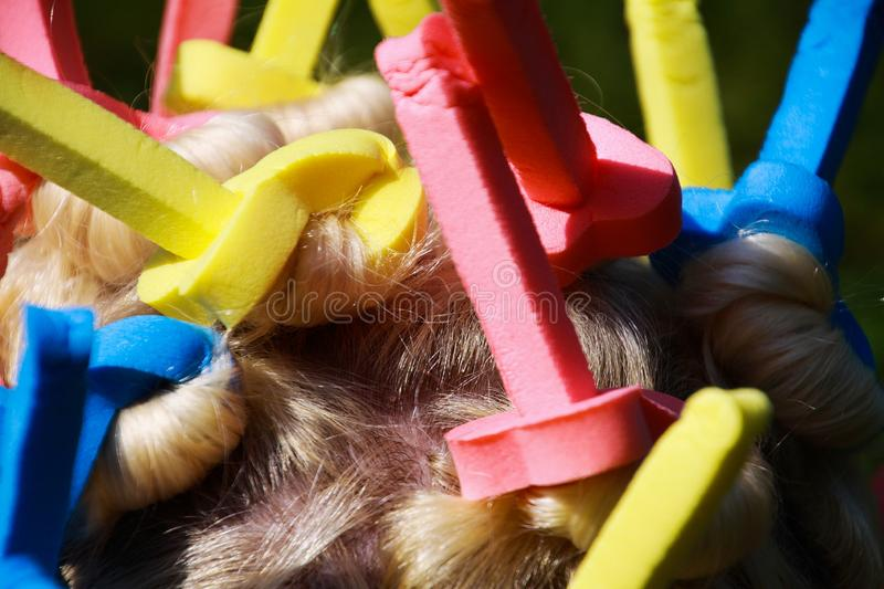 Close up of head of european woman with blonde hair and colorful old-fashioned foam curlers royalty free stock photo