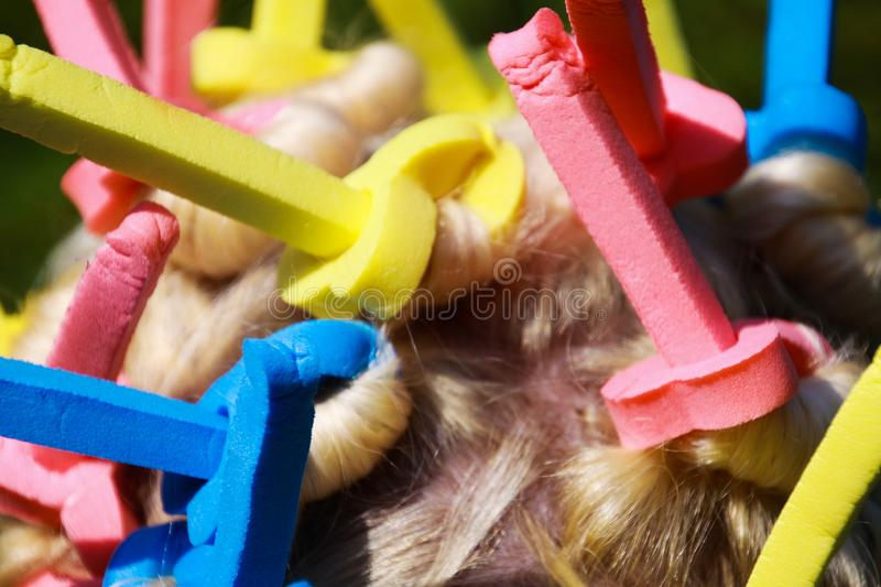 Close up of head of european woman with blonde hair and colorful old-fashioned foam curlers royalty free stock images