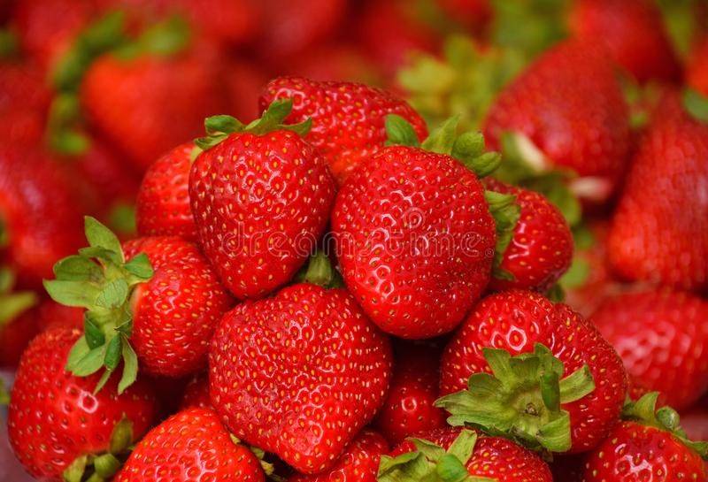 Close up heap of fresh strawberry on retail display. Close up heap of fresh red strawberry berries on retail display of farmers market, high angle view royalty free stock photos
