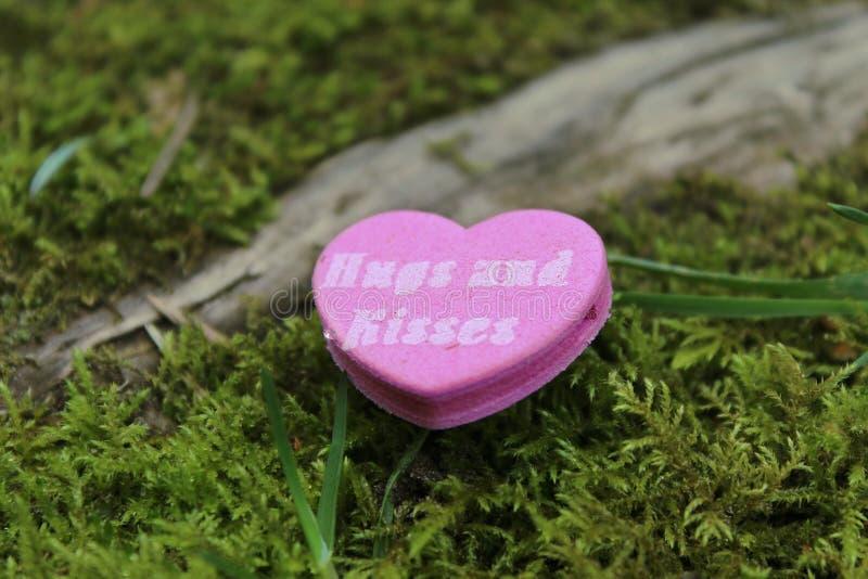 Close-up of Heart Shape Pink stock photos