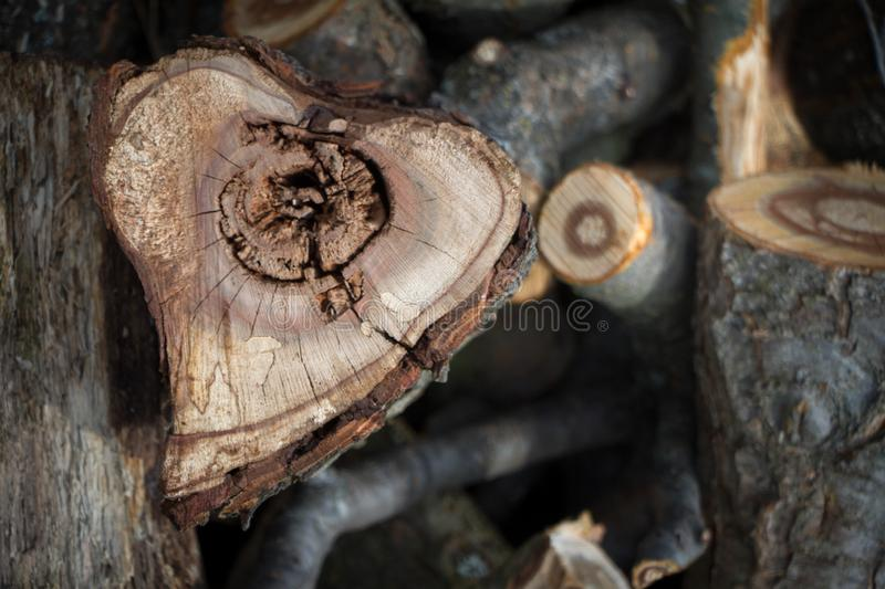 Close-up of a heart-shaped saw cut down firewood for heating a house, background or concept.  stock photo