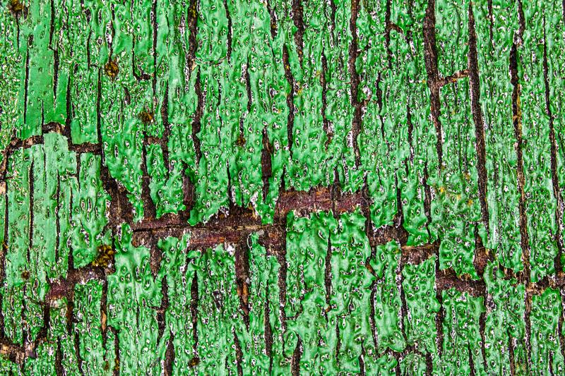 Close Up of a Heavily Weathered and Cracked Painted Wood Door. A Close Up of a Heavily Weathered and Cracked Painted Wood Door stock photo