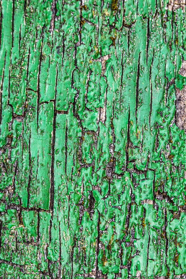 Close Up of a Heavily Weathered and Cracked Painted Wood Door. A Close Up of a Heavily Weathered and Cracked Painted Wood Door stock images