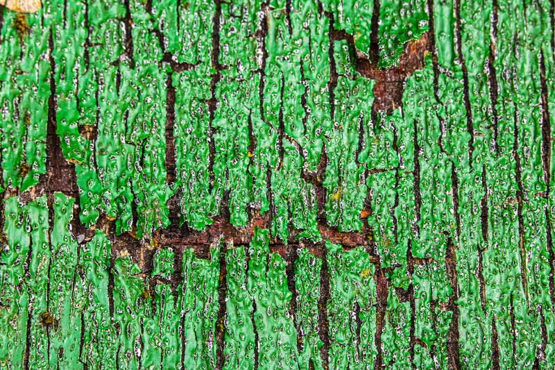 Close Up of a Heavily Weathered and Cracked Painted Wood Door. A Close Up of a Heavily Weathered and Cracked Painted Wood Door stock photos