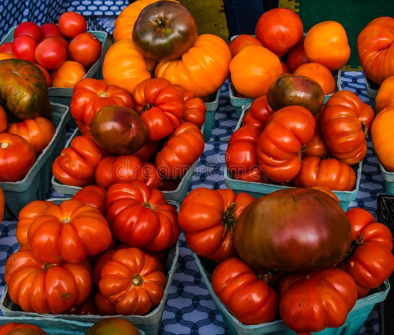 Heirloom Tomatoes for Sale at the Farmer`s Market. Close up of Heirloom tomatoes on display for sale at a Florida farmer`s market royalty free stock photo