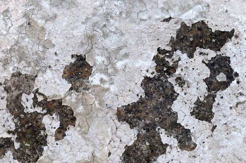 Close up high resolution surface of aged and weathered paint on a wall. Somewhere in europe royalty free stock image