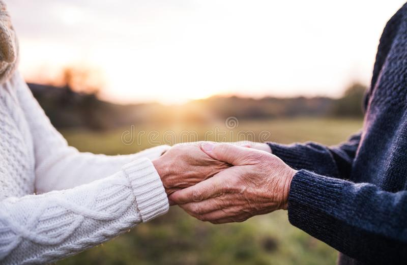 A close-up of holding hands of senior couple in an autumn nature at sunset. A close-up of holding hands of unrecognizable senior couple in an autumn nature at stock photo