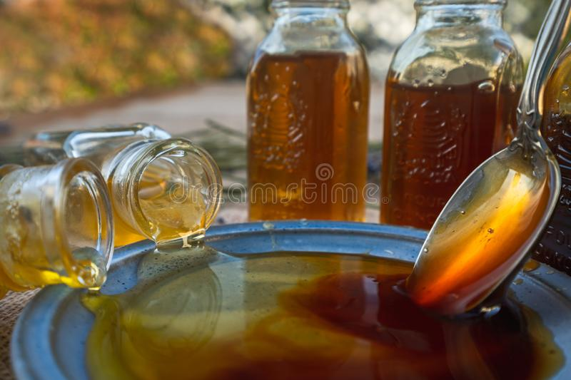 Close up of honey on a plate in natural background. Honey close up, and assortment of honey in bottles in a garden royalty free stock photo