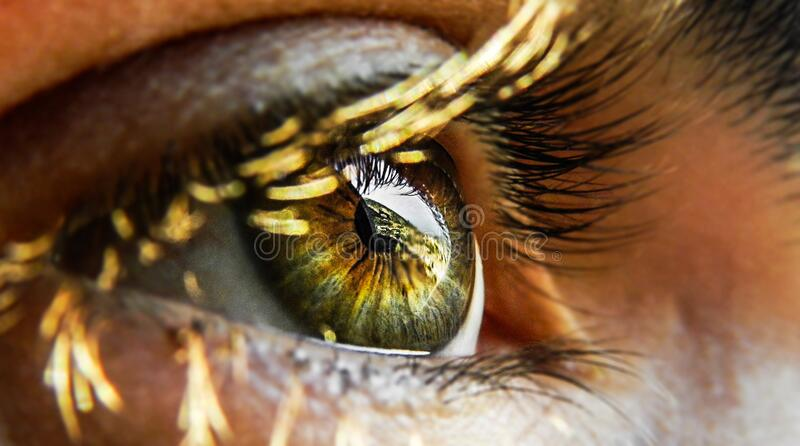 Close-up of Human Eye stock photos