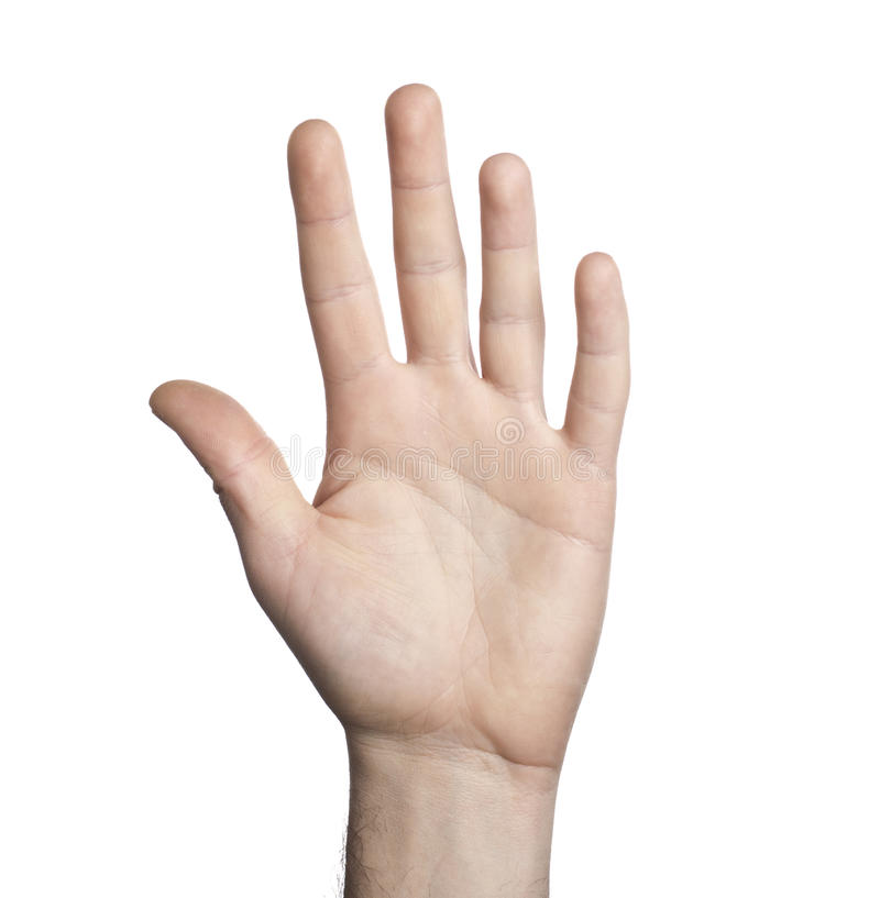 Close-up of human hand. On white background royalty free stock photos