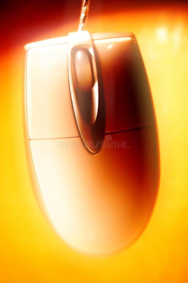 Close-up III do rato fotografia de stock